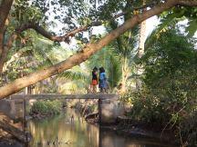 Petites filles des backwaters, réseau de rivières, de canaux et de lagunes, au Kerala
