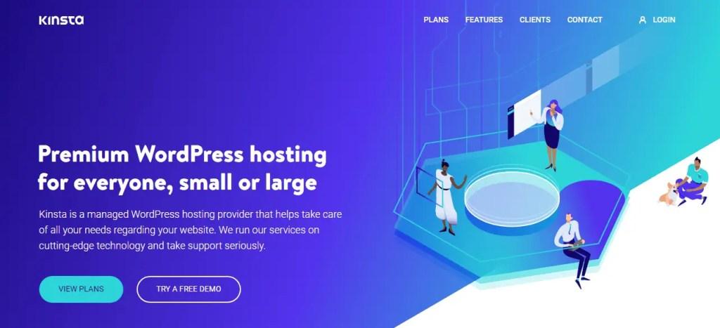 Kinsta Best Web Hosting Providers