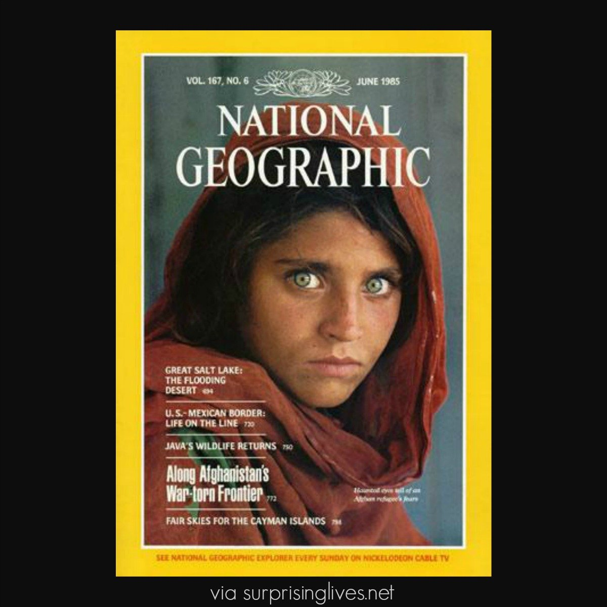 sharbat-gula-afghan-girl-today-updated by surprising lives