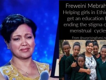 freweini mebrahtu collage from surprising lives