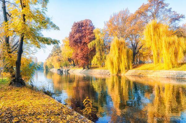 Culorile toamnei in Timisoara