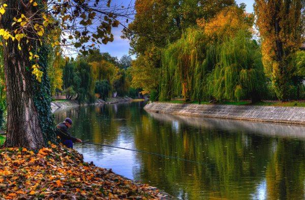 Timisoara - la pescuit