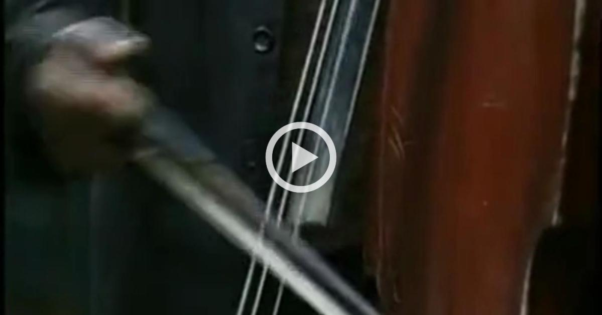 Instrumente muzicale cordofone si de percutie (Documentar)