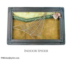 18-Indoor-Spider