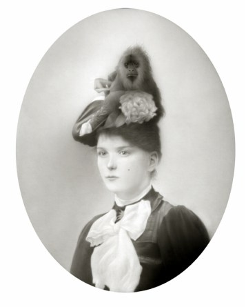 Travis Louie - Miss Lucy and her Hat Monkey