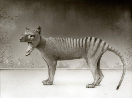 Travis Louie - Ode to Thylacines