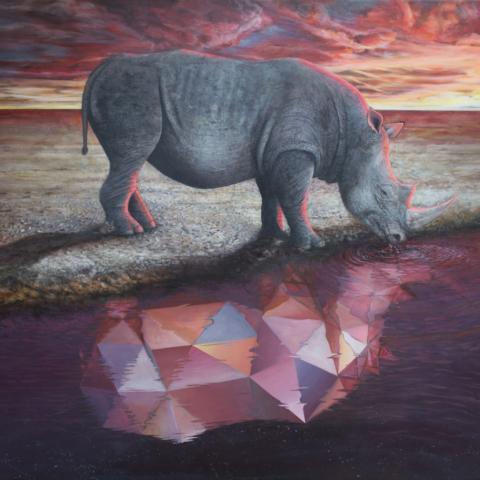 Vincent Fink: Surrealistic Iterations