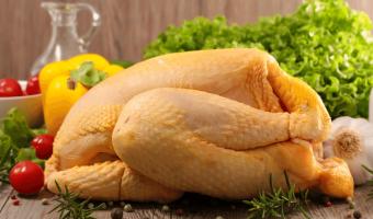 distribuidores de pollo, pollo para consumo, pollo crudo, comprar pollo, vender pollo, pollo por mayor, descuentos en pollo, pollo en promoción,