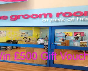 Groom Room Experience Survey