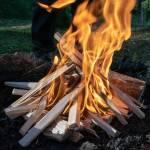 Ist Feuer Im Wald Erlaubt Wie Ist Die Rechtliche Lage