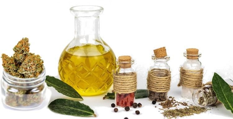 kräutermedizin pflanzenheilkunde kräuter medizin