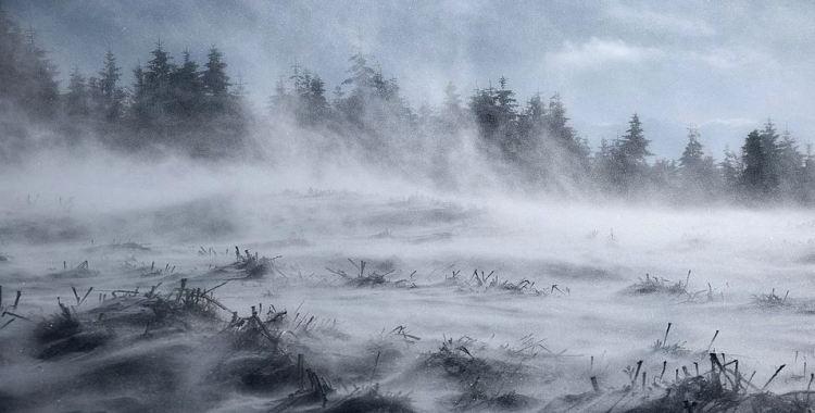 Sturm - Die richtige Vorbereitung auf einen Wintersturm