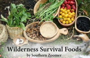 wilderness survival foods