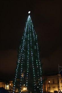 The Oslo Tree!