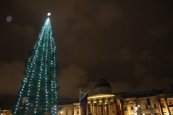 Christmas Tree Lighting in Trafalgar Square!