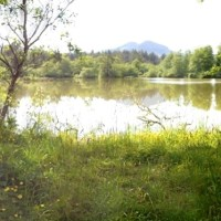 The Mill Ponds in Seaside Oregon | Panoramas & Photos - UPDATED