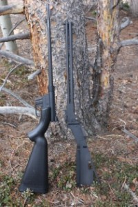 AR-7 vs M-6 Survival Rifle