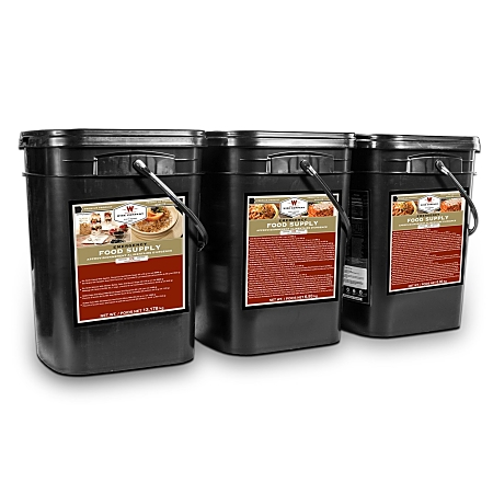Wise 360 Serving Package of Long Term Survival Food