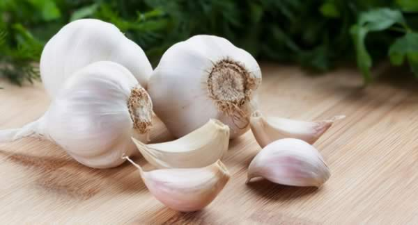 Medicinal Herbs to Grow - Garlic