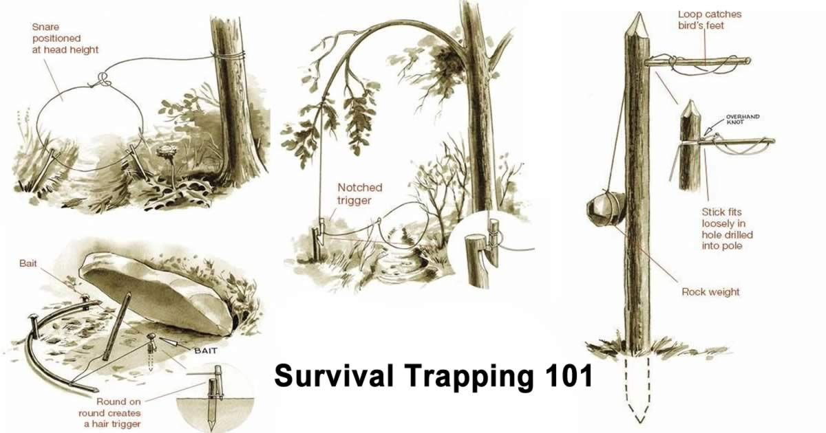 Survival Trapping 101