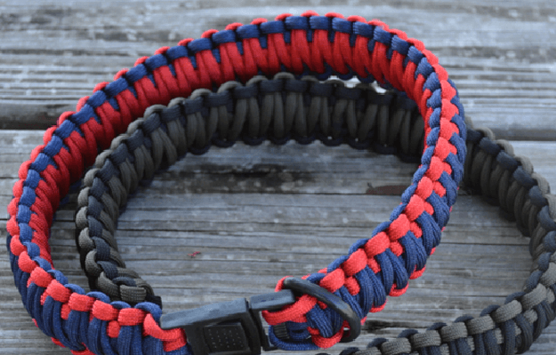 How To Make a Paracord Dog Collar | Cool Paracord Projects
