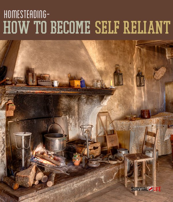 Placard | Homesteading and Sustainability: How To Become Self Reliant | how to start homesteading from scratch