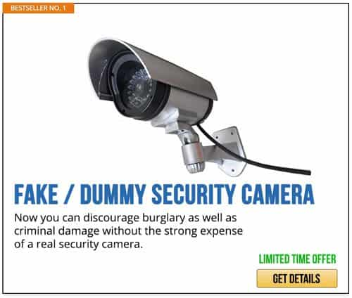 Dummy camera | Tips For Sheltering In Place