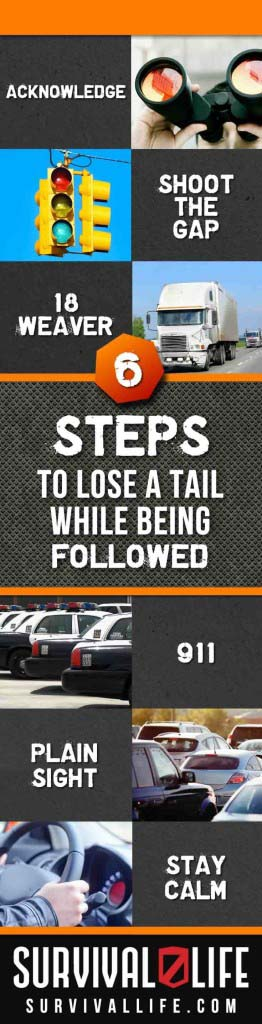how-to-lose-a-tail