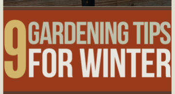 winter gardening tips, organic gardening tips, survival gardening, and prepper tips