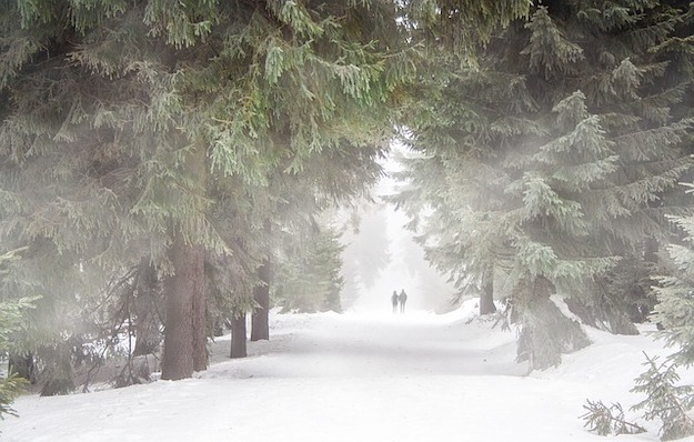 Winter Storm Survival Tips
