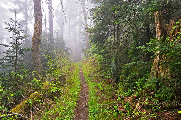 This trail is popular for being the longest hiking trail in the world. Via williambritten.com