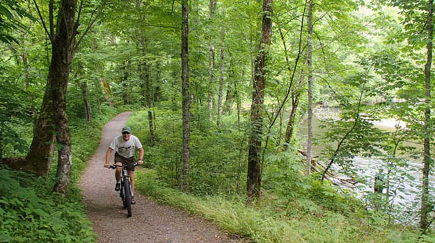 See the sights and wildlife on a bicycle on your Smoky Mountains camping vacation. Via roadslesstraveled.us