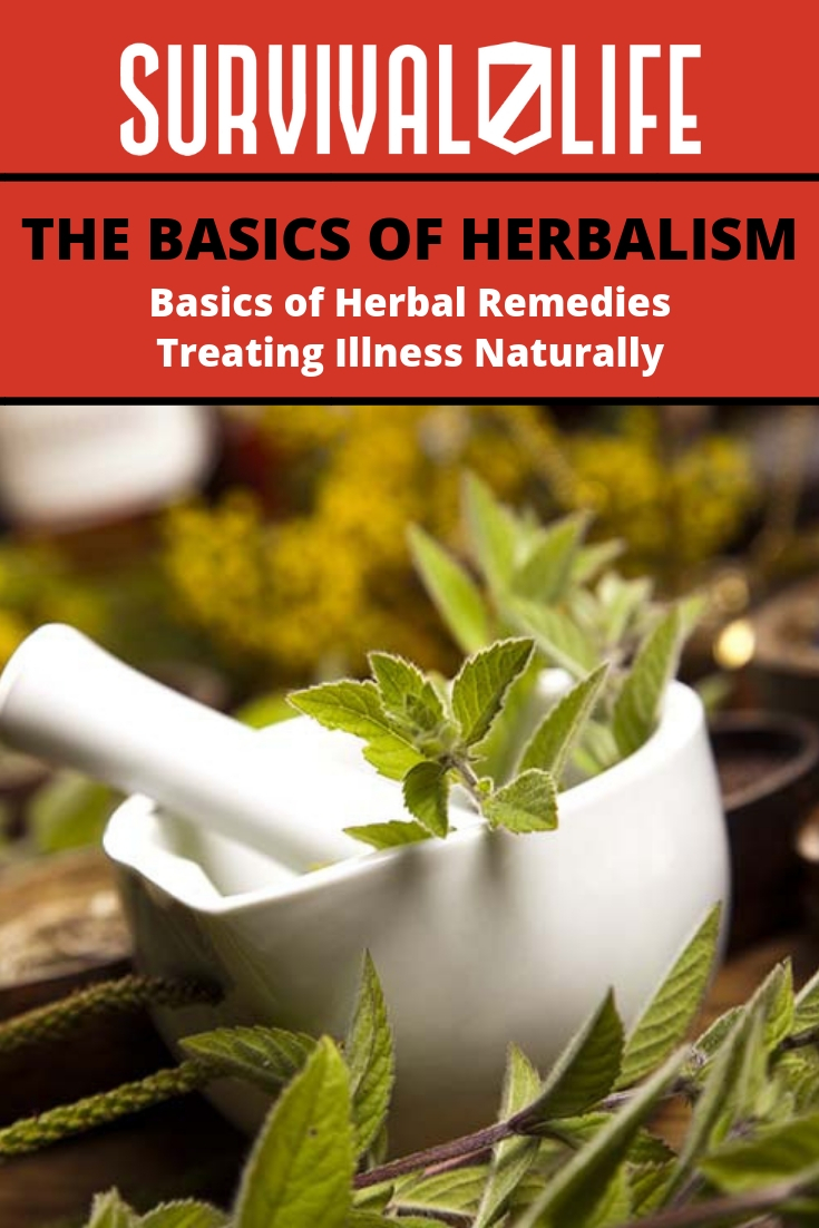Check out The Basics of Herbalism at https://survivallife.com/basics-of-herbalism/