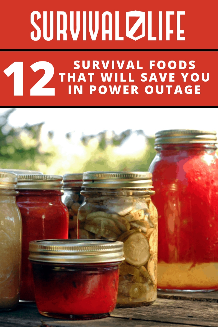 Check out 12 Survival Foods That Will Save You in a Power Outage at https://survivallife.com/survival-foods-will-save-power-outage/