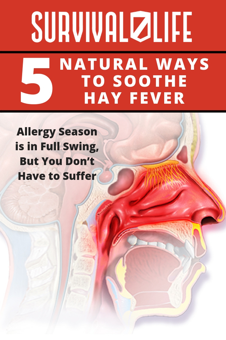 Check out 5 Natural Ways to Soothe Hay Fever at https://survivallife.com/5-natural-ways-to-soothe-hay-fever/