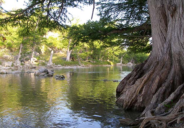 camping at guadalupe river state park
