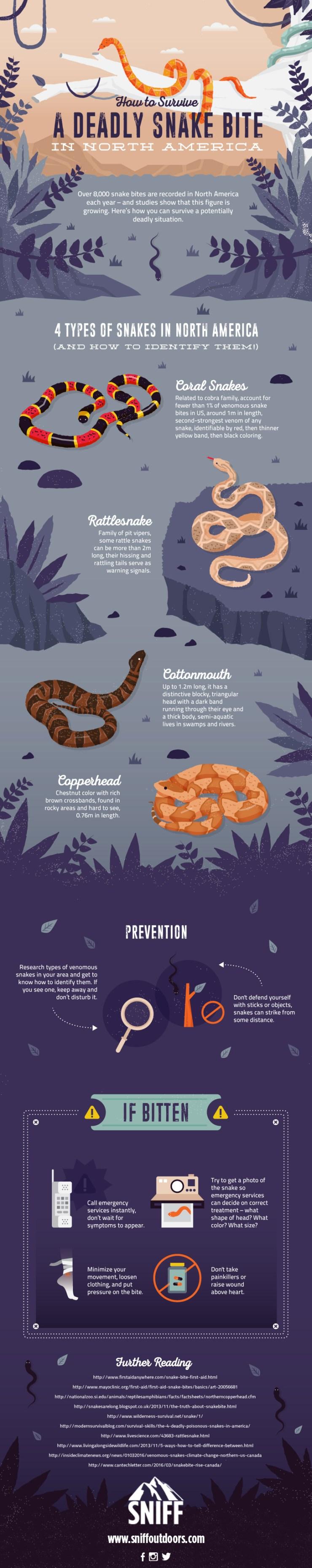 Snake Bites Guide