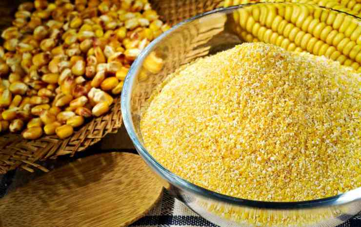 Maize and cornmeal in glass bowl | Fight An Ant Invasion Naturally With These Tips