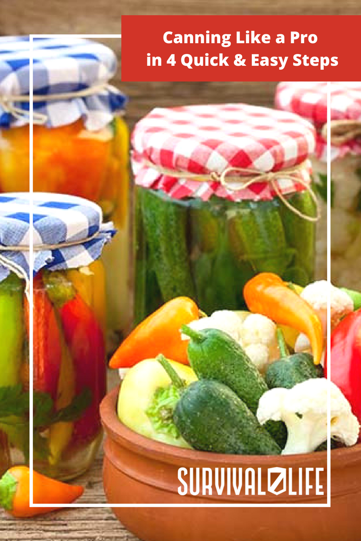 Check out Canning Like a Pro in 4 Quick & Easy Steps at https://survivallife.com/basics-canning/