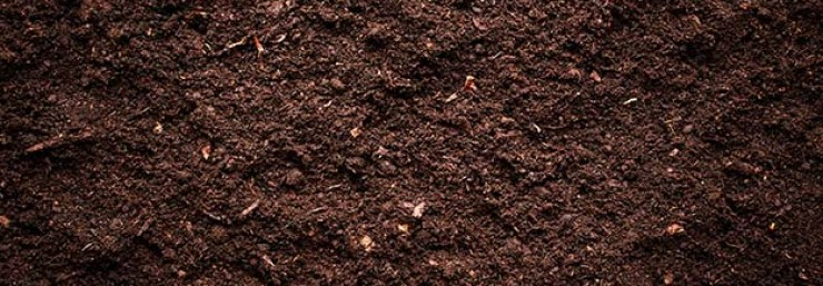 Brown soil | Grow Your Garden All Year Long With An Indoor Garden