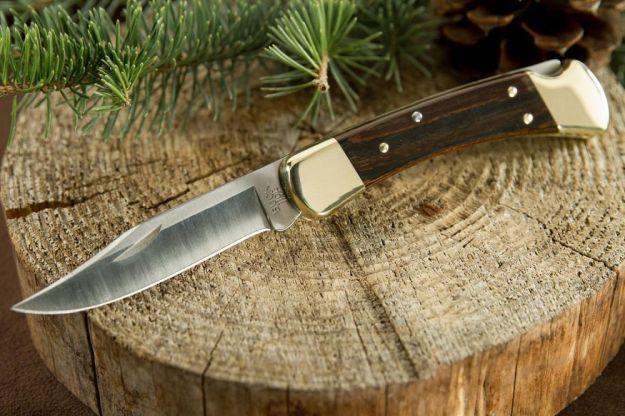 Buck Knives 110BRS Folding Hunter | 10 Good-Looking Folding Hunting Knives Every Hunter Should Appreciate