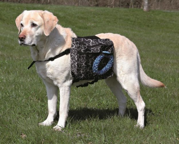 Dog Rucksack | Fido On The Hunt - A Complete Guide To Dog Hunting Gear