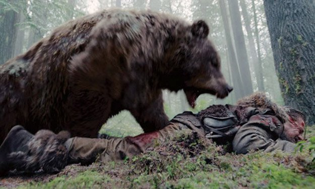 Know Whether to Play Dead or Fight Back | How To Survive A Bear Attack