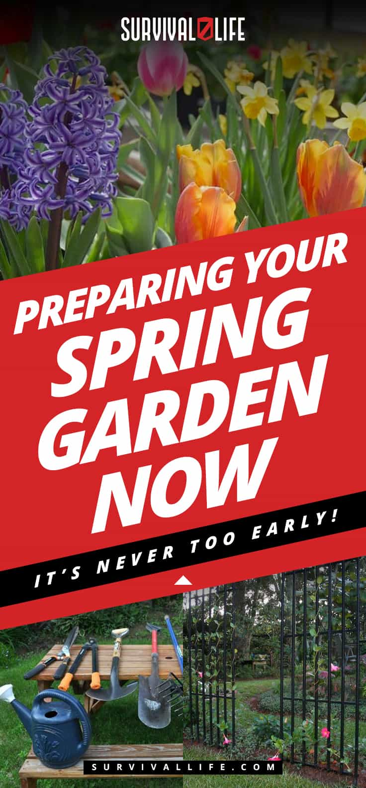 Preparing Your Spring Garden Now | It's Never Too Early!