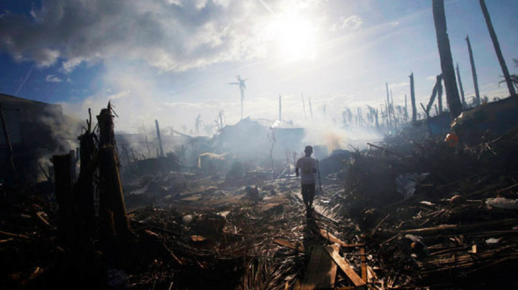 Disaster Survival Featured Image
