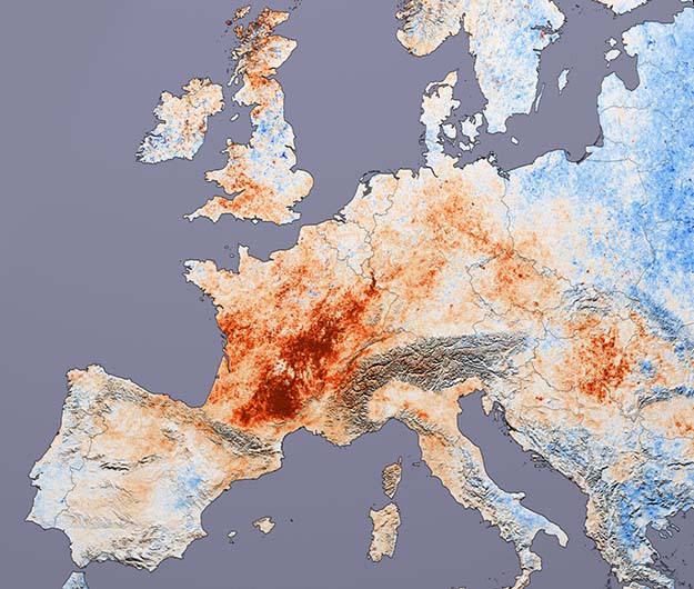 2003 European Heat Wave   Natural Disasters Across The Globe You Need To Know About