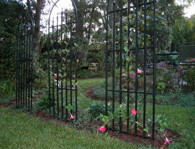 trellis Preparing Your Spring Garden Now | It's Never Too Early!