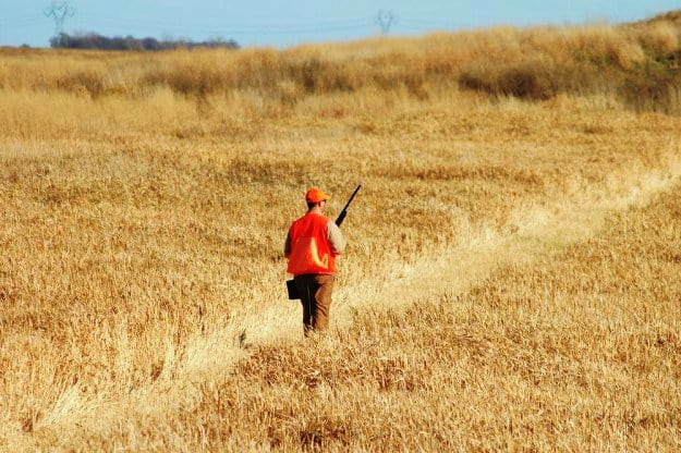 Familiarize Yourself with the Hunting Area | Practical Quail Hunting Tips Every Hunter Should Follow | how to hunt quail without a dog