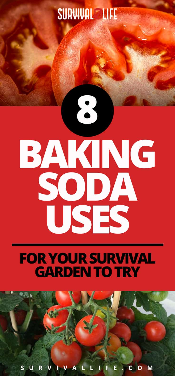 8 Baking Soda Uses For Your Survival Garden To Try