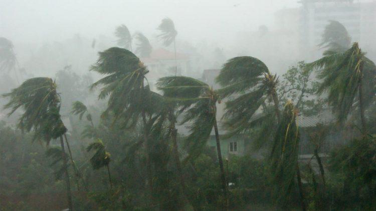 cyclone survival